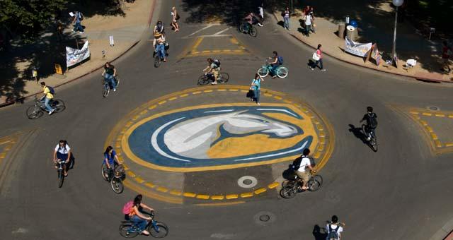 UC-Davis
